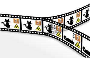 350px-Schroedingers_cat_film