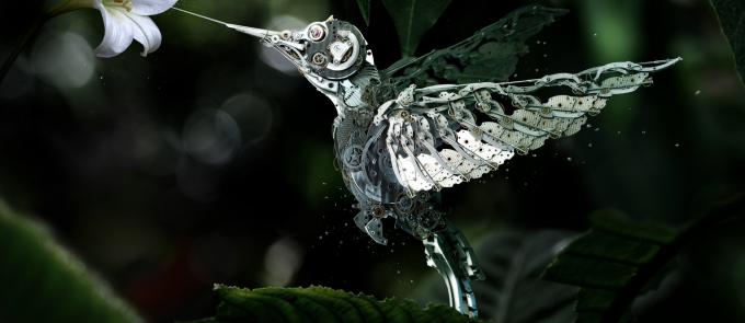 COGS Bird