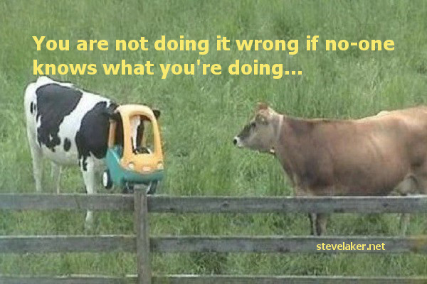 Not doing it wrong cows