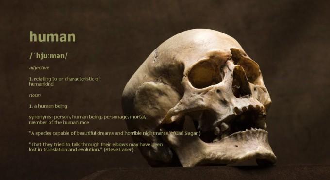 human definition skull