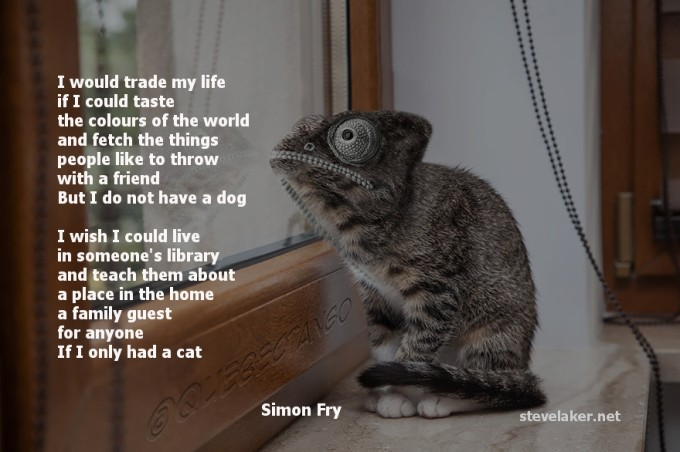 Cats and dogs poem Simon Fry