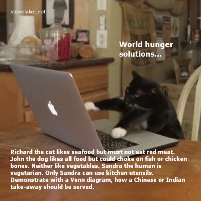 Cat typing world hunger