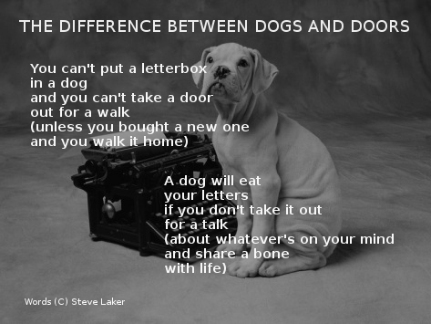 Dogs and Doors