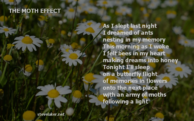 Moth Effect Poem2