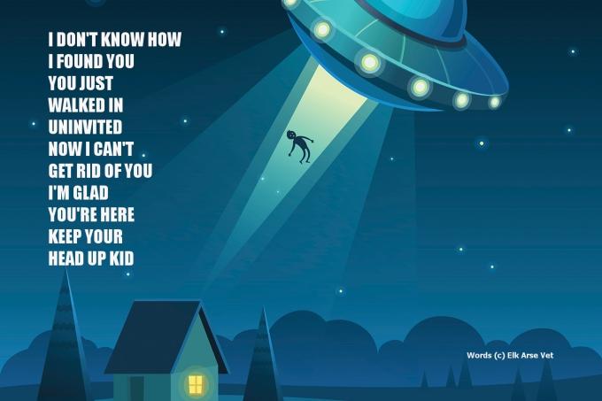 Alien abduction poem