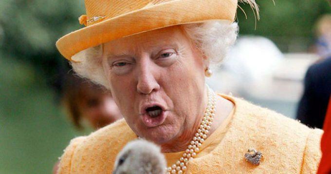 Queen Trump 2